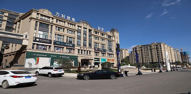 """恒大苏宁合作卖房,多家电商平台开启""""双11""""卖房模式"""