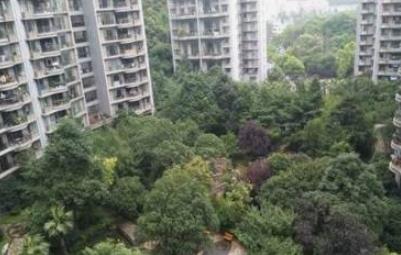 林城花都小区入选贵阳市园林式居住区榜单