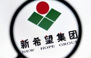 直击半年报丨新希望地产上半年净利润同比增98.27%